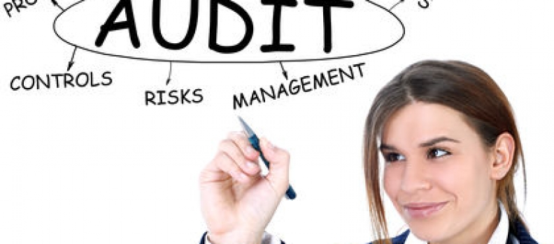 Business Audits & Reviews For Large and Small Companies
